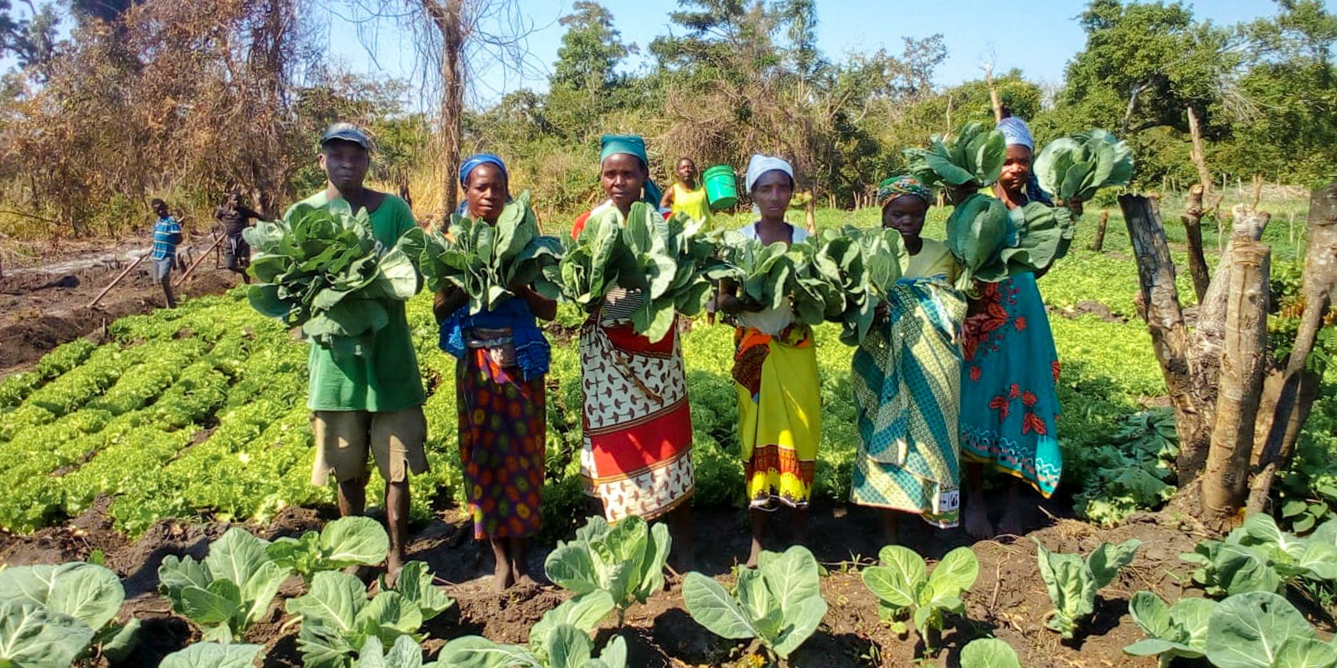 caritas moçambique